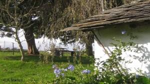 Finca de Casa Mariluz